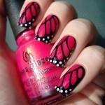 طرح پروانه سرخ آبی و مشکی